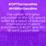 opt-h1b-teaser-4